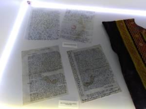 Mostra Frida Kahlo 5