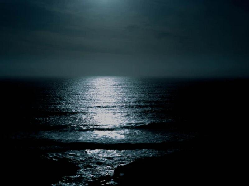 l'insicura amante della notte