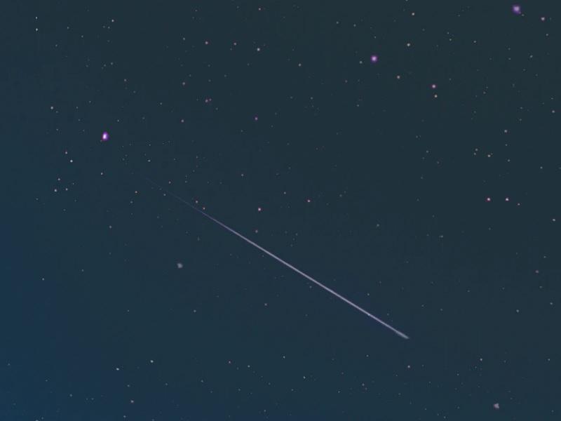 come vedere stelle cadenti