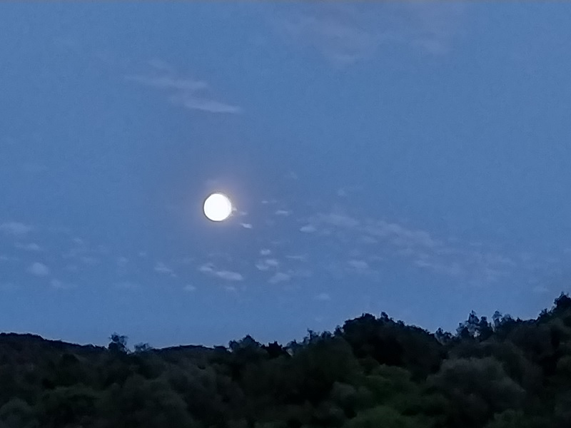 vediamo sempre la stessa faccia della Luna